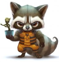 MrRacooN