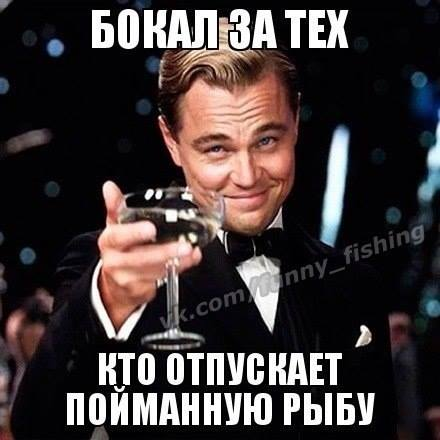10516759_253989598127324_890823752876404413_n.jpg